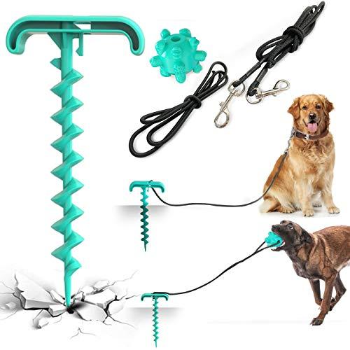 Sammiu Paletti per Catene per Cani Kit Guinzaglio per Cani e Picchetto per Cani con Giocattolo Palla molare da Masticare per Cani per Esterno, Cortile, Campeggio