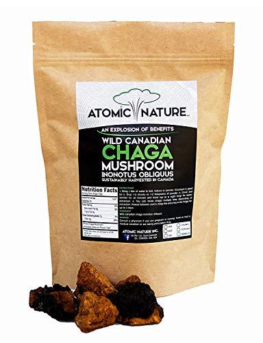 8oz Raw Organic Wild Chaga Mushroom Tea Chunks – 100% Natural Hand-Harvested Canadian Forest Chaga Superfood, Healthy Immune System Booster & Antioxidant