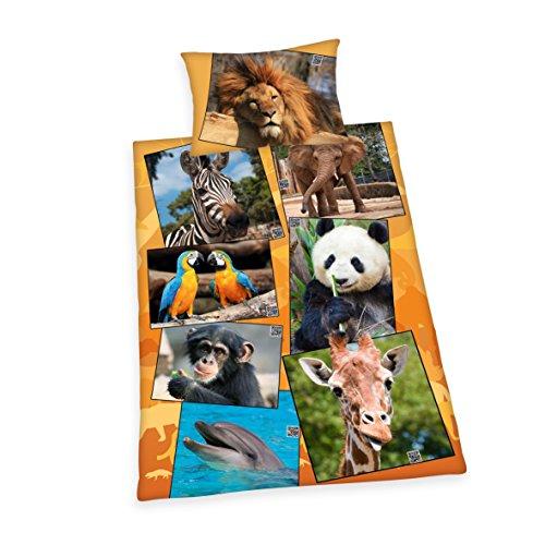 Herding Bettwäsche-Set Young Collection Tiere, Kopfkissenbezug 65x100cm, Bettbezug 160x210cm, 100% Baumwolle, Renforcé, mit leichtläufigem Reißverschluss