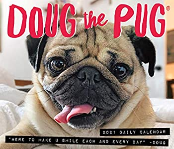 Doug the Pug 2021 Box Calendar  Dog Breed Calendar