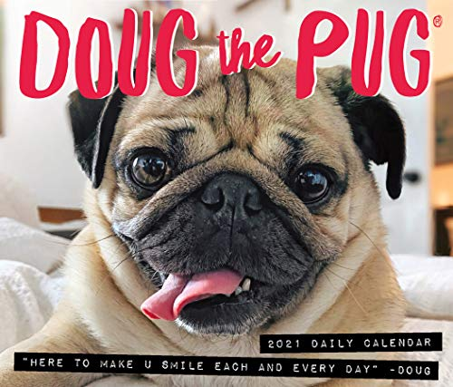 Doug the Pug 2021 Box Calendar (Dog Breed Calendar)