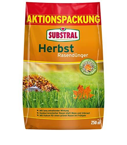 SUBSTRAL® Herbst Rasendünger, 6,25 kg