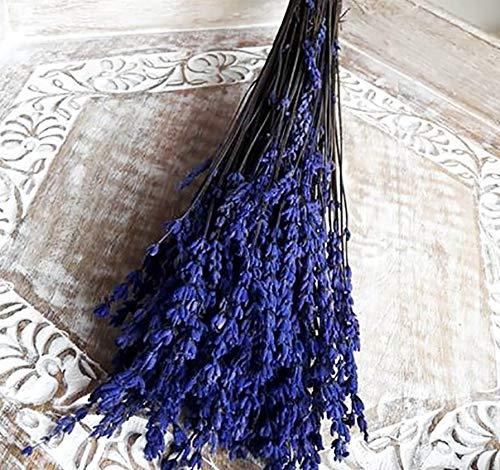 Ramo Lavanda preservada.Lavanda preservada producción Nacional.Ramo de 120 Tallos Aprox. Lavanda Color Azul. Flores secas liofilizadas, Lavanda Flor eterna. Ramo de Novia, Boda.Ramo Silvestre