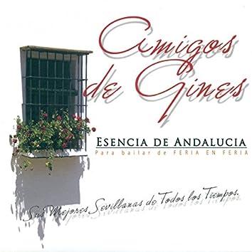 Esencia de Andalucía