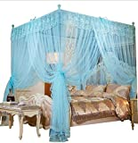 Mengersi 4 Corners Post Canopy Bed Curtain for Girls & Adults - Cute Cozy Bow Netting - 4 Opening -Princess Bedroom Decoration(Queen, Sky Blue)