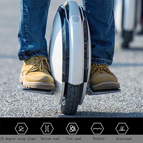 Monowheel FOOF Elektrisches Einrad Bild 3*