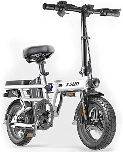 RDJM Electric Bike, Folding Electric Bike for Adults, Commute Ebike with 400W Motor And USB Charging Electric, City Bicycle Max Speed 25 Km/H Lithium Battery Beach Cruiser for Adults