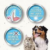 Beaphar – Dog-A-Dent Zahngel – 100 g - 4