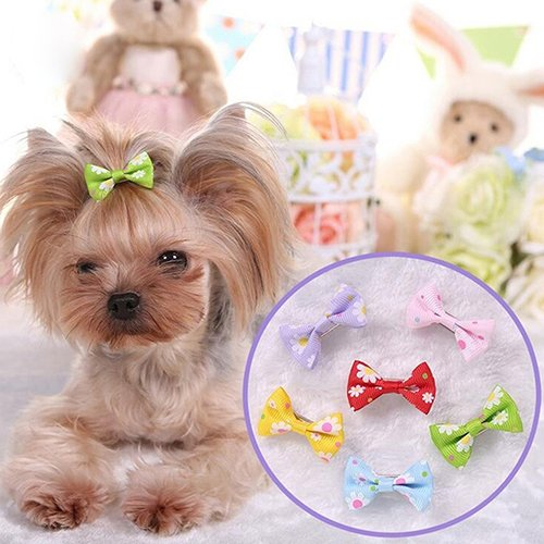 quanjucheer Haarschleifen für Hunde, 6 Stück
