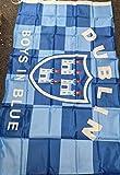 Ireland County Dublin Jungen in blauer Flagge, 1,5 x 0,9 m