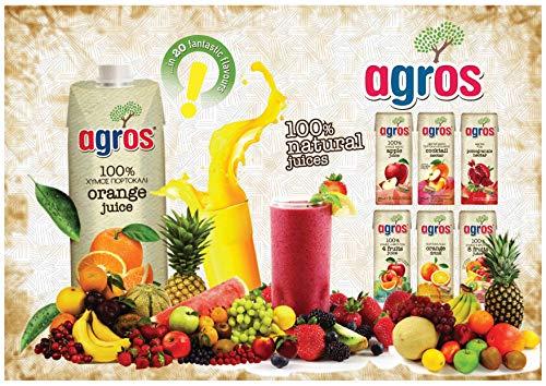 agrosギリシャ産グレープフルーツジュース果汁100%1000ml×12本無添加紙パック業務用まとめ買い濃縮還元12L
