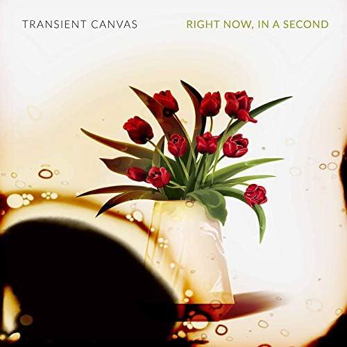 Transient Canvas