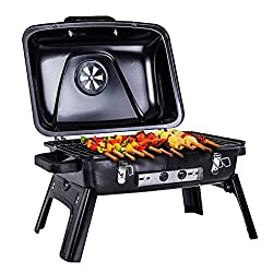 Pinty Charcoal Grill Review