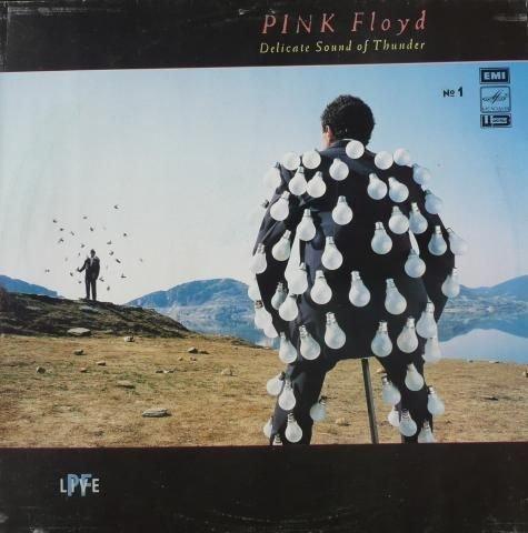 DELICATE SOUND OF THUNDER VINYL LP 1988 PINK FLOYD