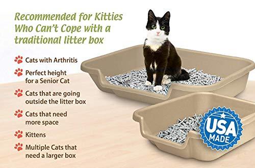 """Kitty Go Here Senior Cat Litter Box 24"""" x 20"""