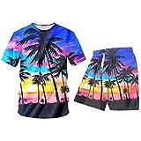 Hombre Traje Casual 2-Pic Conjuntos Hombre Camisa y Pantalones Cortos 3D Hawaii Print Beach Quick Dry Top Hawaiian Chándal