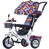 BZEI-BIKE Multifuncional 4-en-1 niño Triciclo Kid Trolley Empuje Stoller Bicicleta con toldo Plegable Anti-UV | para 1-3-6 años de Edad, niño y niña bebé de Juguete | Tela Escocesa