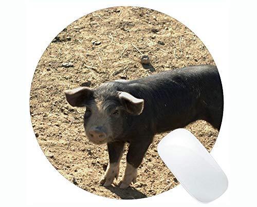 Yanteng Cojín de ratón Redondo de Goma Antideslizante de la Pintura del Cerdo, Estera Redonda del cojín de ratón del bebé