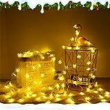 Schneeflocke Lichterketten, 6M 40Pcs LED Batteriebetriebene Lichterketten, Shining Decoration Lightning für Valentinstag Weihnachten Hochzeit Geburtstag Party Schlafzimmer Indoor&Outdoor (Warm White) - 3