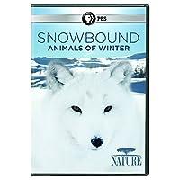 Nature: Snowbound: Animals of Winter [DVD] [Import]