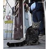 岩合光昭の世界ネコ歩き シチリア[Blu-ray/ブルーレイ]