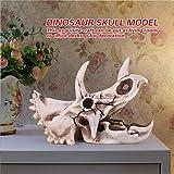Immagine 2 fdit resina dinosauri triceratopo cranio