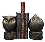 Ebros Gift Wisdom of The Forest Wide Eyed Fat Cupid Owls On Tree Stump Bookends Pair Set Statue Nocturnal Owl Birds Whimsical Decorative Accent for Library Shelves Desktops Countertops Mantelpiece