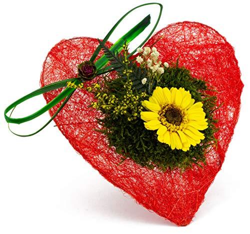 Pure Difference - Echte Konservierte Infinity Gerbera in Gelb auf roten Deko Herz zum aufstellen - Blumenstrauß mit Liebe handgefertigt - Ewig blühende Freude als Geschenk - Mind. 3 Jahre haltbar