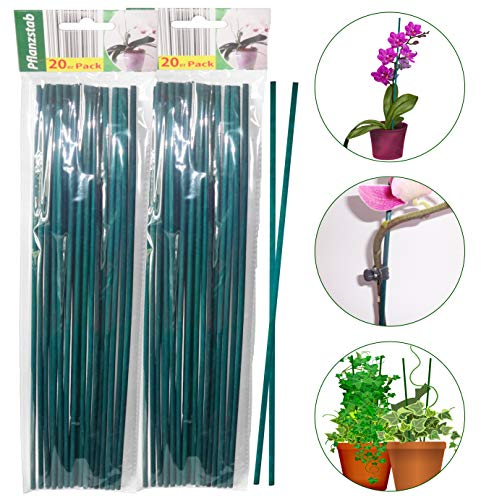 O&W Security 40 Stück Pflanzenstäbe Pflanzenstützen Tomatenstäbe Rankhilfe aus Holz grün 40 cm ökologisch 100% kompostierbar