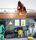 Zoom IMG-1 skateboard professionale completo 31x8 tavola