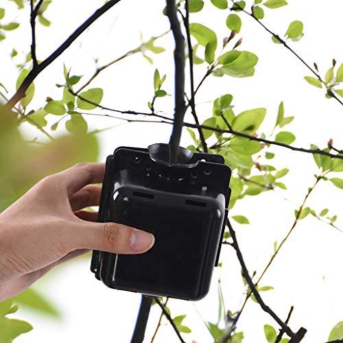 Anzuchtplatte Plant Rooter Box,Anzuchtschalen Plant Rooting Device Pflanzenzüchtung Propagation Ball Grafting Ball Professional Propagatoren Gartenarbeit Anzucht 10,5 x 9 x 8,7 cm (Schwarz)