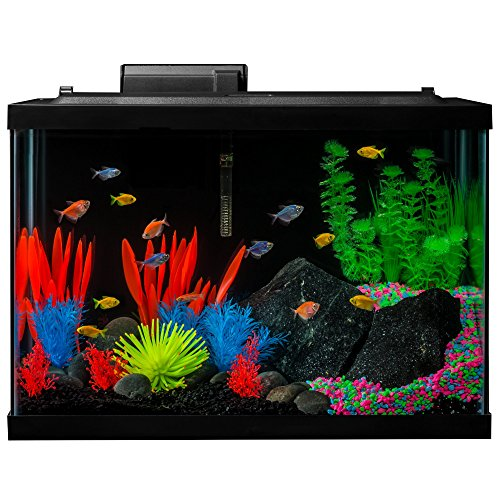 GloFish Aquarium Kit Fish Tank