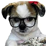 Style Vault G015 Dog Pet Costume Clear Lens 80s Retro Glasses for Small Dogs up to 15lbs (Black-Clear Lens)