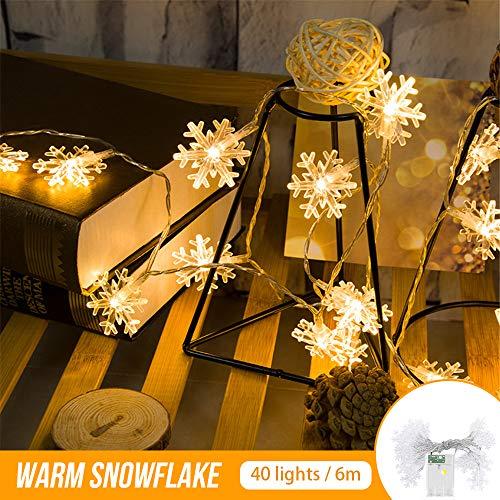 Zorara Cadena de Luces - Guirnalda Luces 6M 40 LED - Guirnalda Luces Pilas Nieve- Decoración Interior, Jardines, Casas, Boda, Fiesta de Navidad [Clase de eficiencia energética A+++] (Nieve)