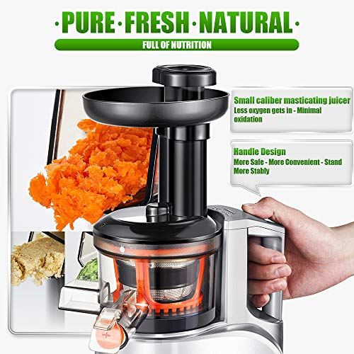 AMZCHEF Slow Juicer Slow Masticating Juicer Extractor Slow Cold Press Juicer Machine with Quiet Motor Reverse Function Portable Handle Brush&Vegetable Fruit Juice Jugs Easy to Clean BPA Free 55RPM