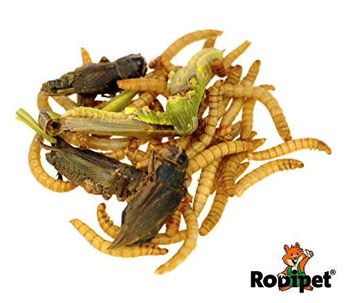 Rodipet® Insektenmix Protein Snack 50g