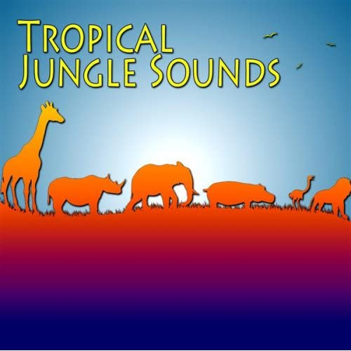 Zebra Sounds by The Sounds Of Tropical Jungle on Amazon