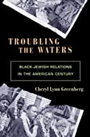 Troubling the Waters: Black-Jewish Relations In The American Century (Politics And Society In Modern America) (Politics and Society in Twentieth-Century America)