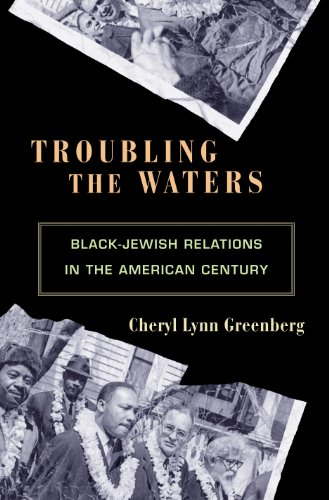 Troubling the Waters: Black-Jewish Relations in the American Century (Politics and Society in Modern America, 68)