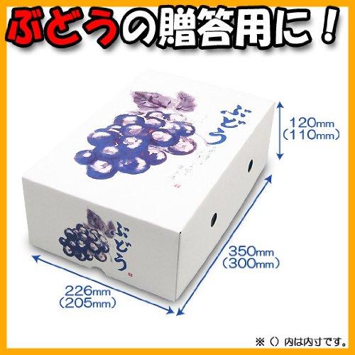 【メーカー直送品のため代引不可】もぎたてのぶどう 2K 50セット (ぶどう箱 フルーツ用 果物用 ギフトボックス ギフト箱 贈答用 箱)