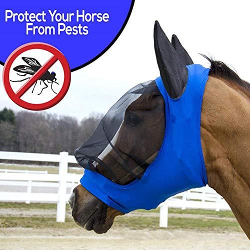 Fliegenmaske Mit Nasenschutz Augenschutz Ohren Schwarz Lichtdurchlässiges Feines Netz Bequem Und Atmungsaktiv Zum Schutz des Pferdes Vor Mückenstichen