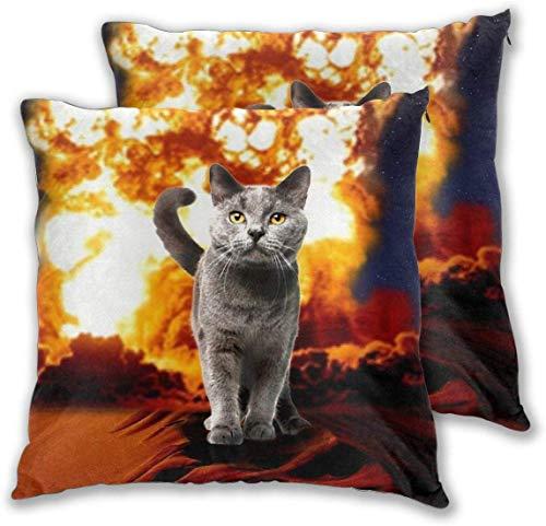 BathWang Fire Cat Explosie Action Movie Crazy Space Kitty Kussensloop Set 2 Stuks Kussen Decoratief Kussen Fluwelen Hoesje voor Kinderen Volwassenen 18 X 18 Inch