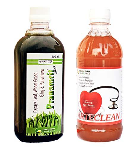 Pranacharya Greenshield Men and Women Pranamrit Wheatgrass Juice with Giloy, Papaya Leaf, Apple Cider Vinegar with Ginger, Garlic, Lemon and Honey
