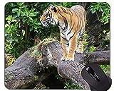 Yanteng Tiger Gaming Mousepad, Tiger Mouse Pads