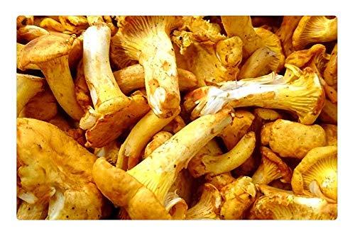 LESGAULEST Doormat Floor Rug/Mat (23.6 x 15.7 inch) - Chanterelles Mushrooms Chantarelle Chanterelle