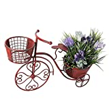 YK Decor 18.5x27.5x9.75' Tricycle Plant Stand Flower Pot Holder Terrace Nostalgic Bicycle Metal Planter Stand Indoor Outdoor Home Garden Yard Decor for Plant Lovers Mother's Day