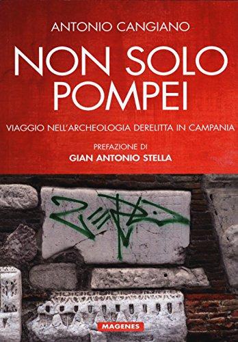 Non solo Pompei. Viaggio nell'archeologia derelitta in Campania