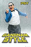 PSY - Gangnam Snow - VIP Musik Poster Rap Music Poster