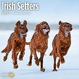2021 Irish Setters Wall Calend...