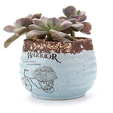T4U 3.75 Rustic Stlye Round Sucuulent Cactus Plant Pots Flower Pots Planters Containers Window Boxes Blue